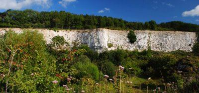Monkton Nature Reserve -Visit Ramsgate