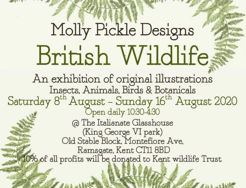 Molly Pickles Design – British Wildlife